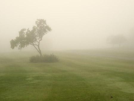 Brouillard-4