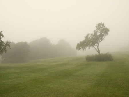 Brouillard-3