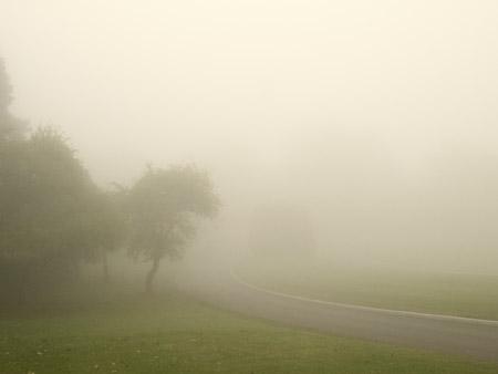 Brouillard-6