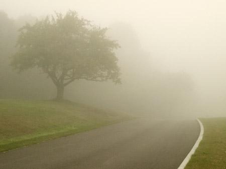 Brouillard-5