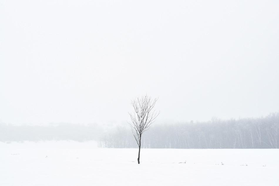 Blanc-04