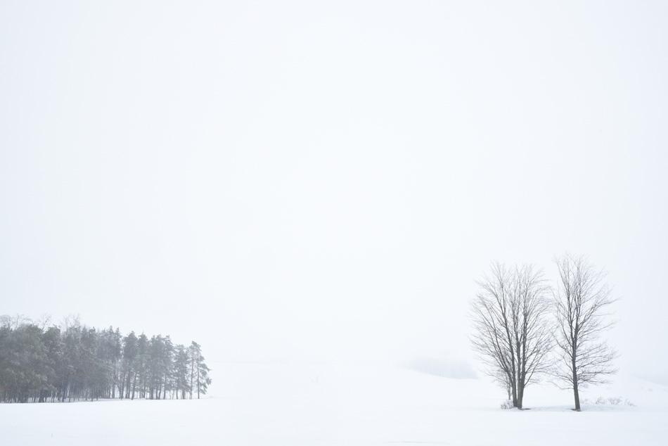 Blanc-06