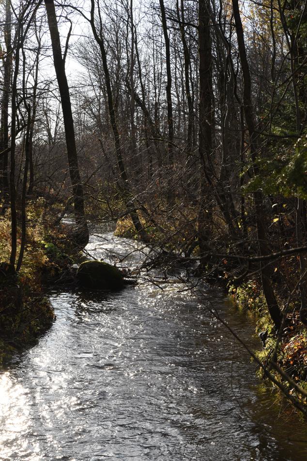 Ruisseau-12