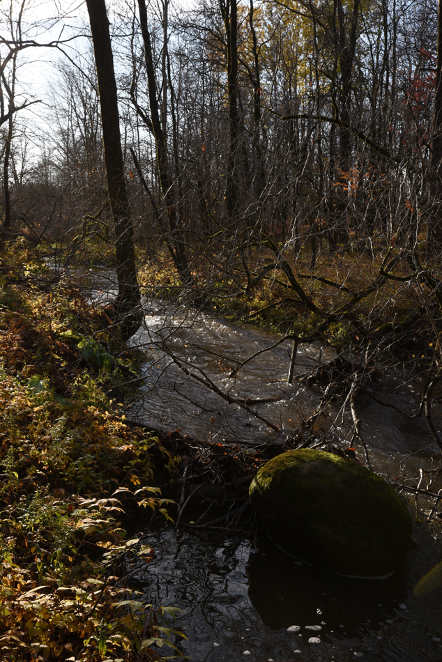 Ruisseau-13