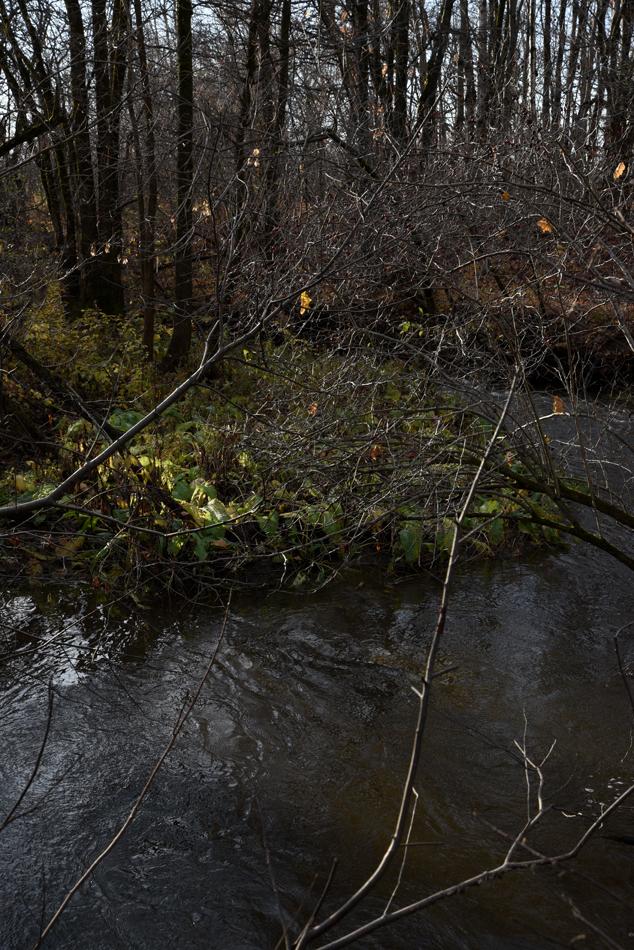 Ruisseau-14